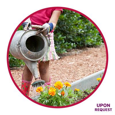 Water-Smart Ways to a Beautiful Yard